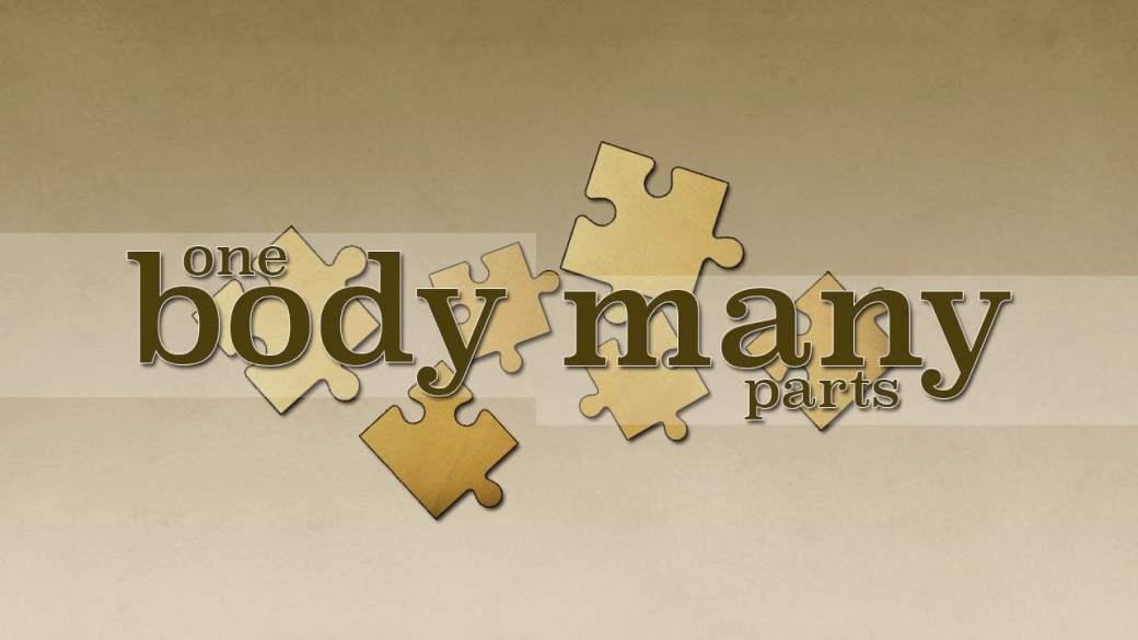 One body many parts