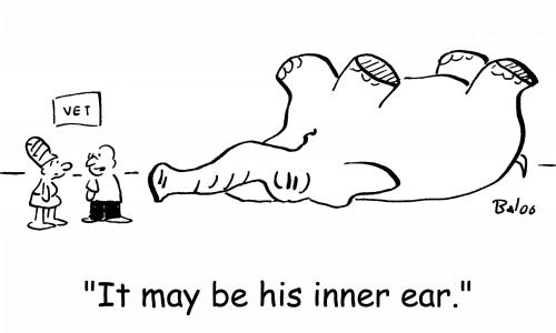 Vestibular cartoon